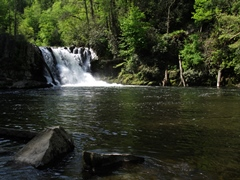 abrams-falls-thumbnail